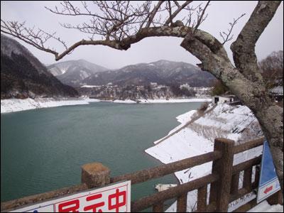 今朝の赤谷湖-2