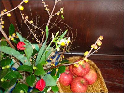 沼田雪んこ りんご