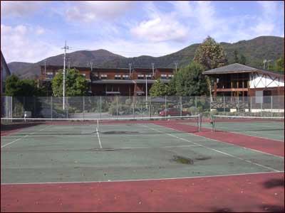 tenisukoto.jpg