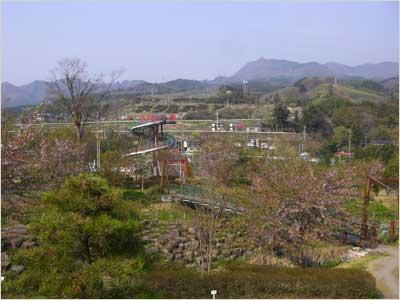 矢瀬親水公園